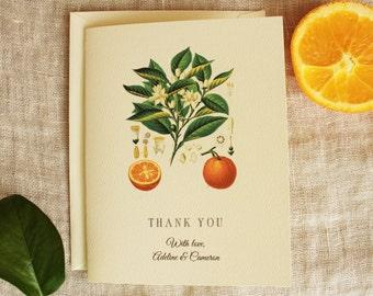 Wedding Thank You Cards | Orange Blossom Thank You Card Set | Orange Baby Shower Thank You Cards Bulk | Bridal Shower Thank You Cards