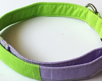 Green and Purple Dog or Cat Collar