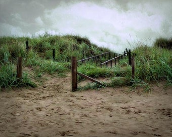 Path to St. Andrews - 8x10 Fine Art Photographic Print - Signed by Artist