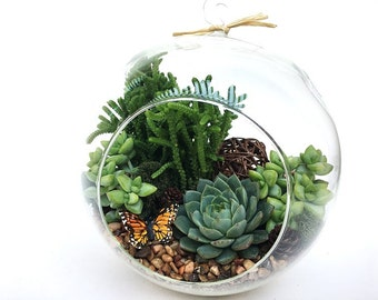 "XLarge Succulent Terrarium DIY Kit ""Woodsy""-Teacher Gift-Birthday Gift-Housewarming Gift-Gift for Him-Gift for Dad-Planter-Graduation Gift"