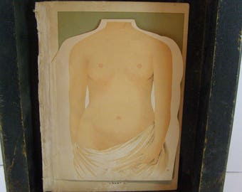 "1901 ""Original"" Colorful multi-layered flip chart of the Female Body and Internal and Reproductive Organs. Beautifully illustrated."