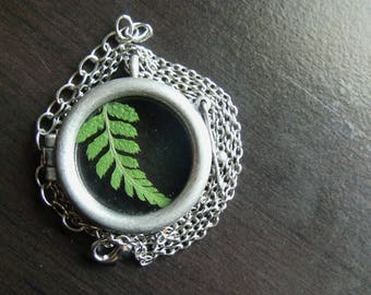 glass locket with preserved fern // green and silver. fern necklace.