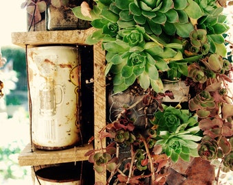 Antique Succulent Box