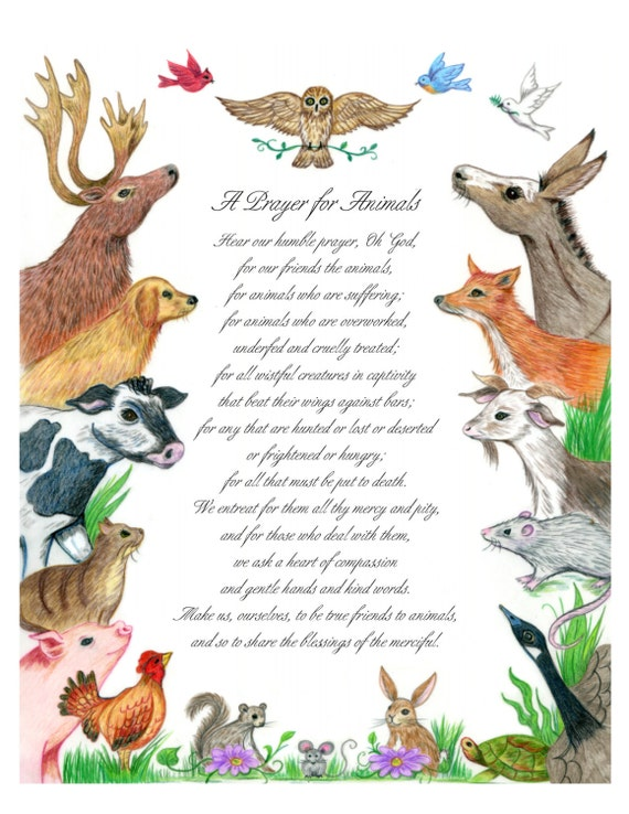 Prayer for Animals illustrated 8 x 10 print elk donkey
