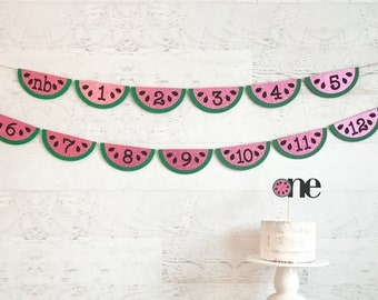 Watermelon photo timeline banner - photo timeline banner - watermelon birthday banner - summer birthday banner - girl birthday banner