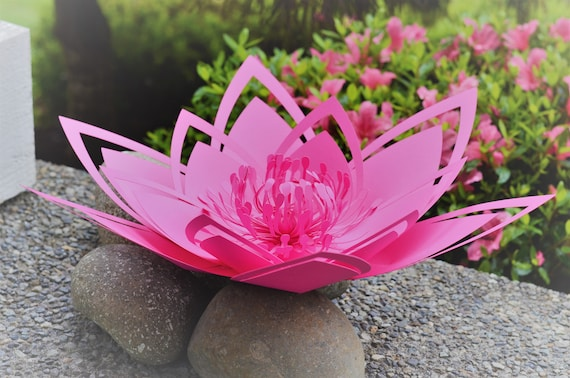 Paper flower template. PDF. Large 18 inch Water Lilly.