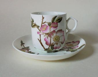 Antique China Cup and Saucer ~ Briar Pattern  c.1881  by George Jones and Sons