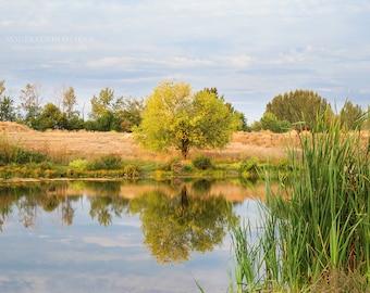 Autumn landscape, fine art photograph; tree reflection on water