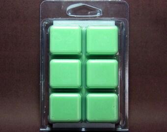 Mint Chocolate Breakaway Clamshell Soy Wax Tart Melts