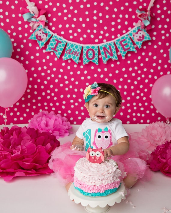 OWL BIRTHDAY BANNER 1st birthday girl Birthday banner