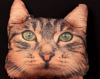 Cat Pillow  Decorative pillow Animal pillow