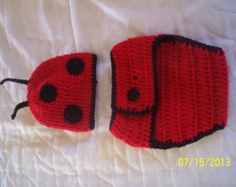 Lady Bug Hat & Diaper Cover