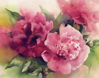 Peony watercolor - peony art print - peony painting - flower painting watercolor print - watercolor peony -  paper
