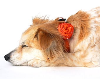 Rosalicious Leather Dog Collar - California Tangerine