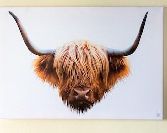 Highland cow / cattle on Canvas. Digital artwork.