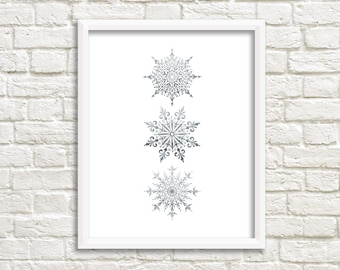 Winter Decor Silver Snowflakes Printable Wall Art Winter Print Holiday Print Christmas Printable Silver Snowflakes Print Winter Snowflakes