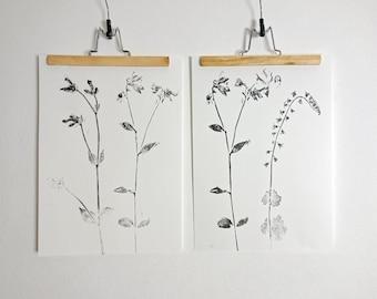 Handmade poster, original print, monoprint of flowers from my garden, Black and white, 30 x 42 cm.