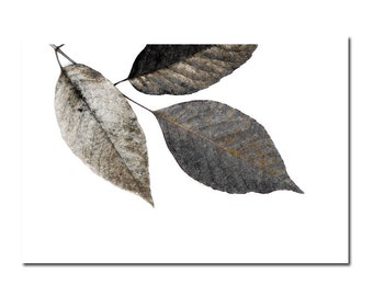 Woodland Wall Art Gray Leaves Rustic Leaf Nature Grey Neutral Decor