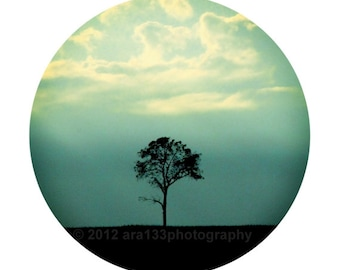 Minimalist Photograph,  Tree Photography, Nature Photo, Landscape Picture, Teal, Black- Round Image on an 8x10 inch Print - Lone Tree