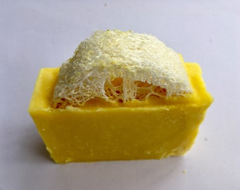 Freshly Zested Lemon Soap with Natural Loofa -FREE Shipping-Vegan Cold Process