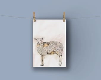 Nursery Sheep Print A4