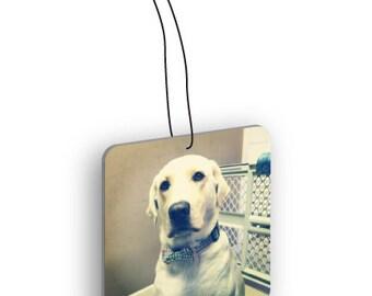 Pets Photo Custom Air Freshener - Single