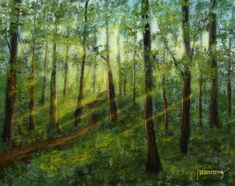 Sunbeams In Woods