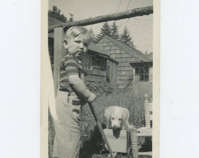 Vintage Snapshot Photo: A Boy & His Dog (712628)