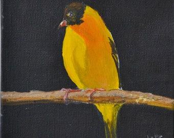 Yellow Bird Original Acrylic painting