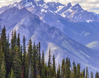 Mountains, Rocky Mountains, Canada, Banff, Purple, Trees, Forest. Landscape Photos, Digital Download