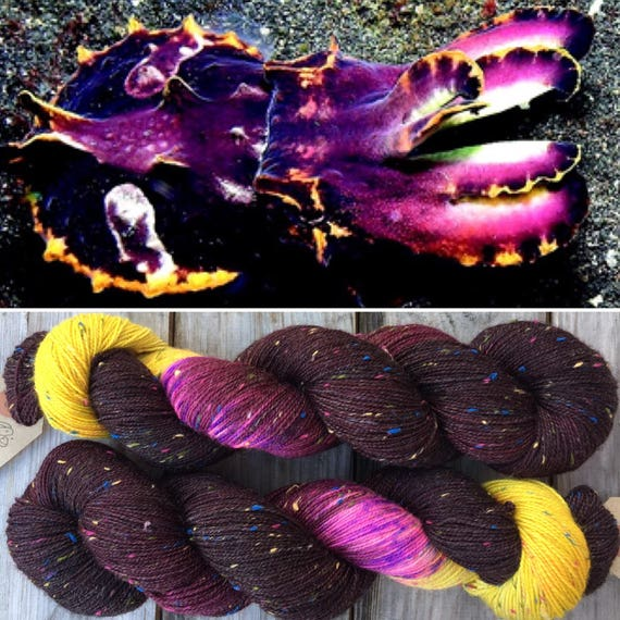 Flamboyant Cuttlefish Donegal Sock merino indie dyed sock yarn with multicolour neps