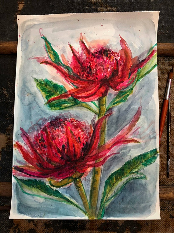 Original watercolour painting on paper Two Waratahs  artwork by Paula Mills wall art