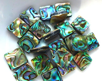 Rainbow Abalone Beads Paua Shell Beads Square Pack of 10