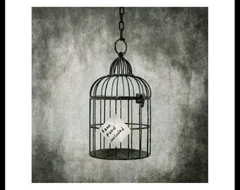 Cage. Silver gelatin darkroom print