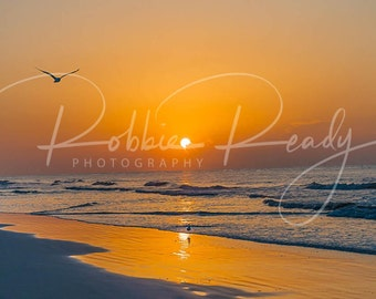 Hilton Head Sunrise Photography Print