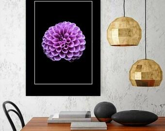 Purple Dahlia Print Gift For Her Large Botanical Wall Art Living room Artwork Flower Photograph Floral Art Still Life Nature Kitchen Decor