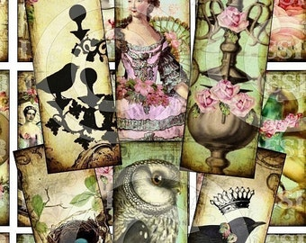 DIGITAL CoLLaGe SHEET 1 x 3 inch BiRDs NeST CHaNDeLieR CHiLDReN OWLS MaRiE aNToiNeTTe RoSeS antique vintage images glass microscope slide soldered pendant tile necklaces jewelry making paper supplies altered art s12