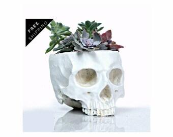 Skull decor, Succulent Planter, Makeup organizer, office decor, home decor, bohemian, bohemian decor, Goth, Occult, Gift for her, Skull