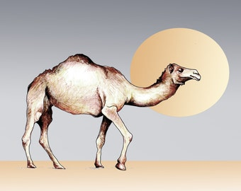 Create Your Own Camel Card