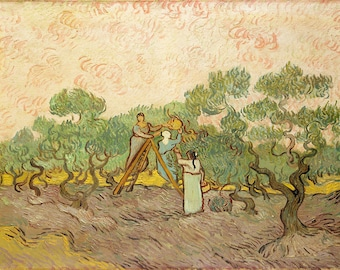 Vincent van Gogh: Women Picking Olives. Fine Art Print/Poster. (004193)