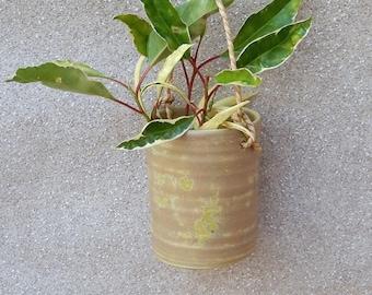 Hanging herb planter hand thrown stoneware pottery ceramic plant pot