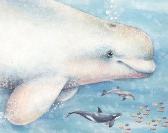 Watercolour Baluga Whale Art Print - Wall Art- Animal Print - Illustration