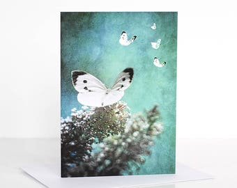 Photo greeting card, Photographic greeting card. Butterfly Photographic Greeting Card. Blank card. Vintage. Photography cards