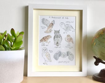Parliament of Owls, Owl Print, Wall Art, Birds of Prey, Owl Illustration, Mounted Print