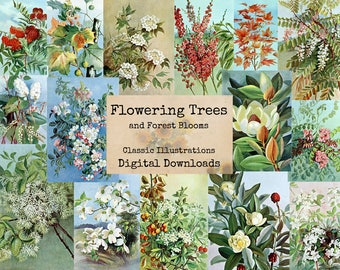Flowering Trees and Forest Blooms - Digital Ephemera Classics, Digital Images, Vintage Art, Instant Download, Digital Collage, Art Ephemera