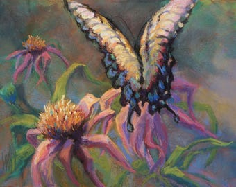 Swallowtail and Coneflowers