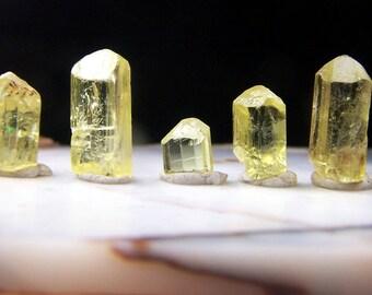 Yellow apatite crystal - one stone Terminated point - natural genuine small gemmy specimen - wire wrap jewelry raw solar plexus chakra TYA3