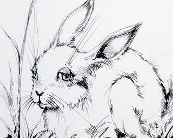 Easter bunny, rabbit, hare, spring, daffodil, original pen drawing