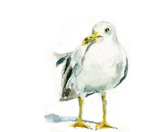 Watercolor Seagull , Seagull Print