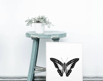 Butterfly printable - Monochrome decor - Minimalist home - Black and white wall art - Butterflies printable - Monochrome art prints